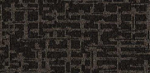 Paragon Cresta