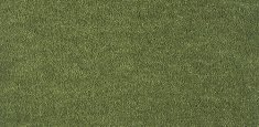 591 Moss
